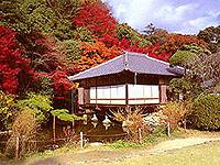 小京都コース