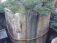 高砂 生石神社:石乃寳殿(いしのほうでん)